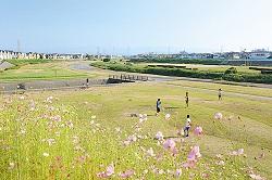 大津川緑地