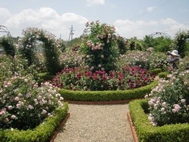 泉南市農業公園 『花咲きファーム』